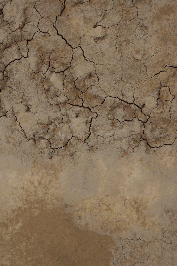 Textura del desierto imágenes de archivo libres de regalías