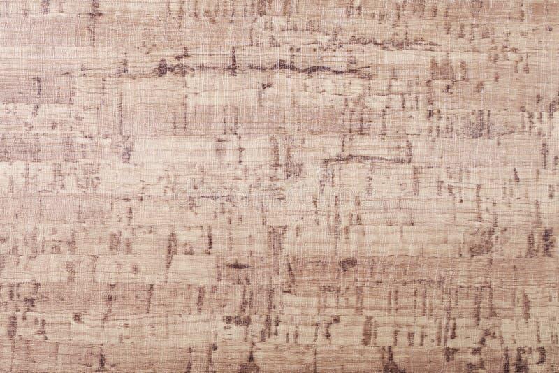 Textura del embutido de madera de la chapa fotografía de archivo