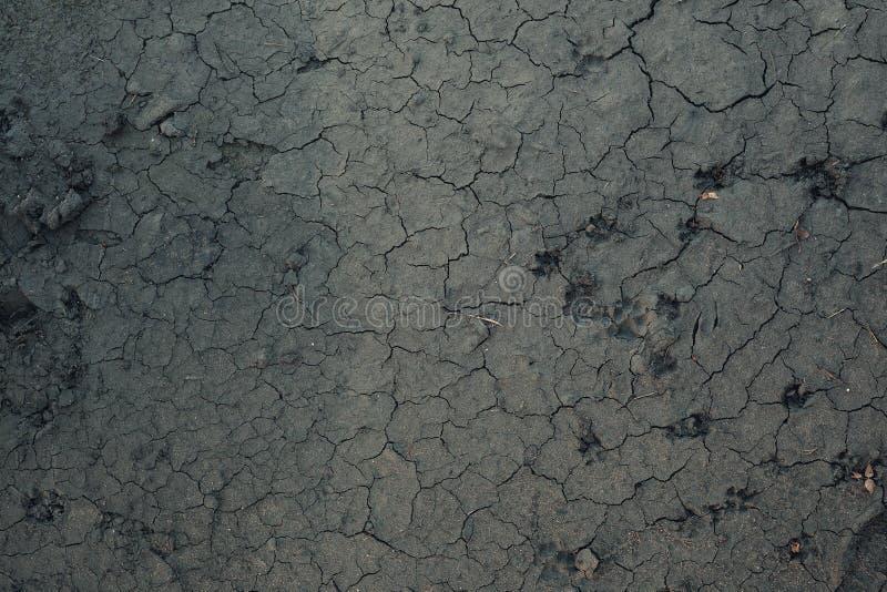 Download Textura del fango seco imagen de archivo. Imagen de suelo - 100527143