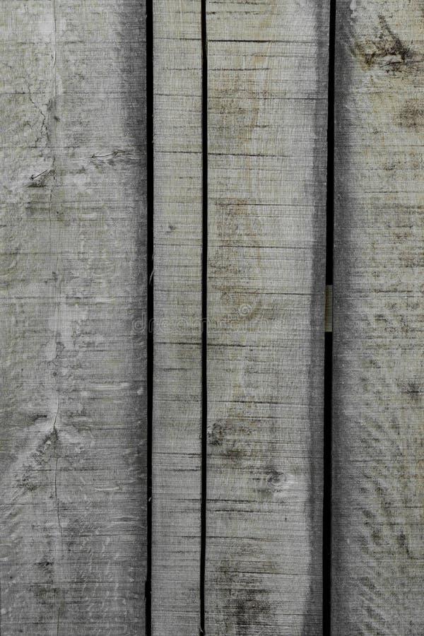 Textura del fondo de la corteza de ?rbol imágenes de archivo libres de regalías