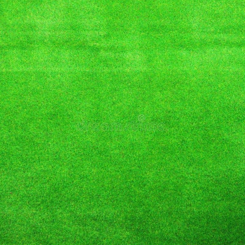 Textura del fondo de la hierba verde imágenes de archivo libres de regalías