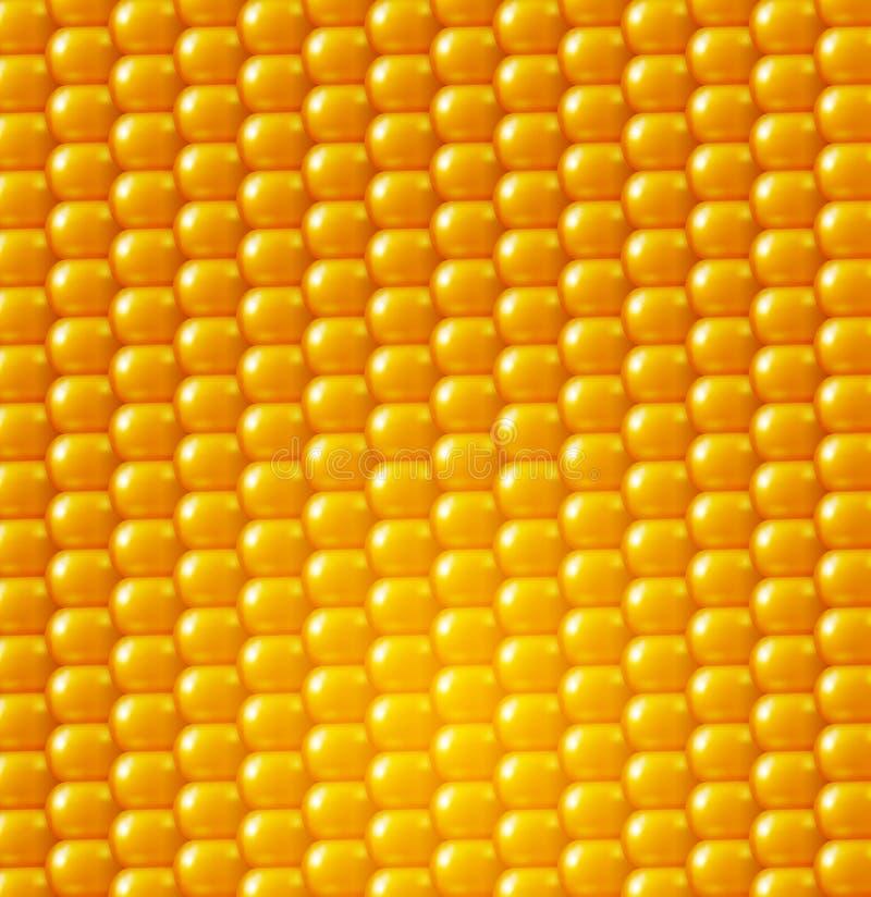 Textura del fondo del vector, maíz amarillo Elemento del diseño ilustración del vector