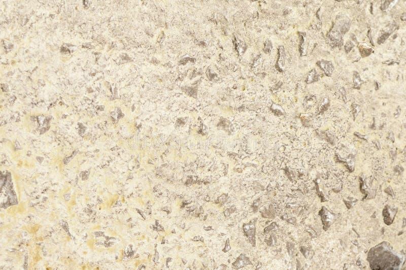 Textura del muro de cemento gris fotografía de archivo libre de regalías