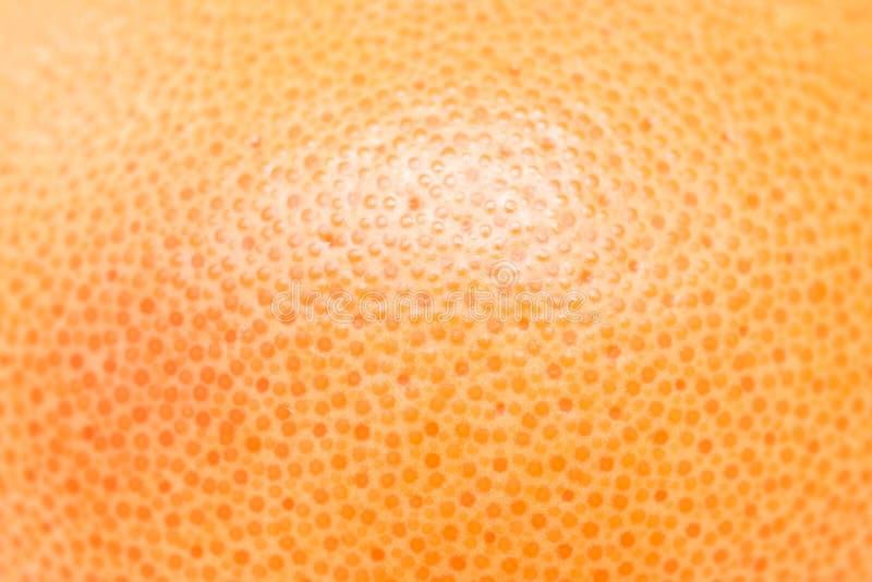 Textura del pomelo rosado foto de archivo libre de regalías
