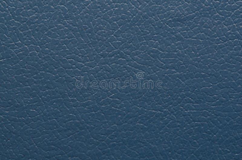 Textura del primer de la piel imagen de archivo