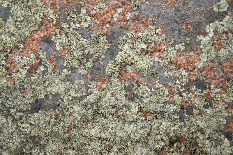 Textura del primer de la roca del granito foto de archivo