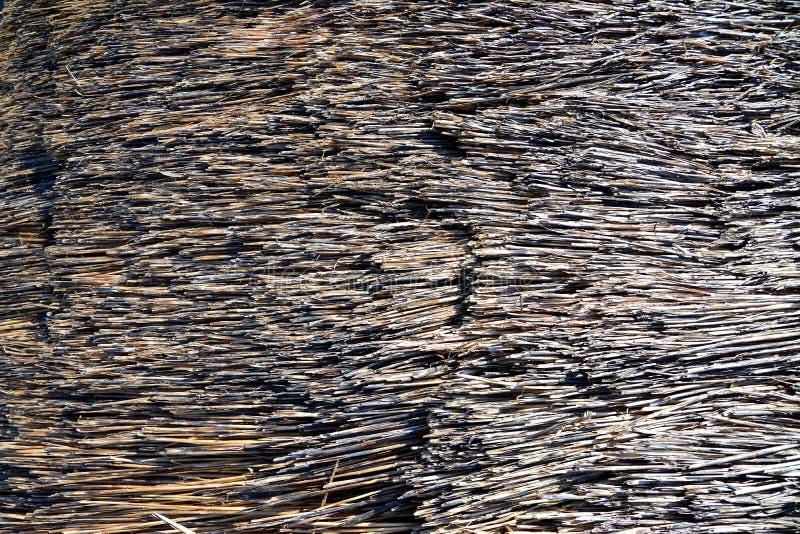 Textura del tejado de la paja fotos de archivo