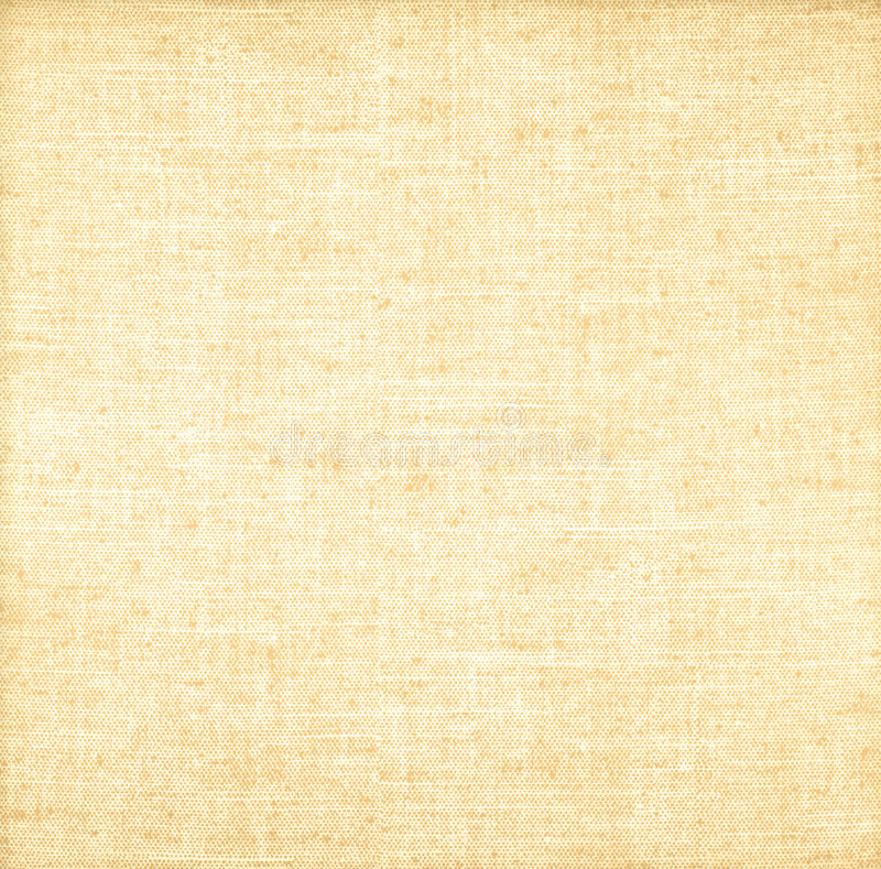 Textura detalhada de serapilheira ilustração royalty free