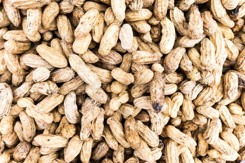 Textura do amendoim da fervura fotografia de stock