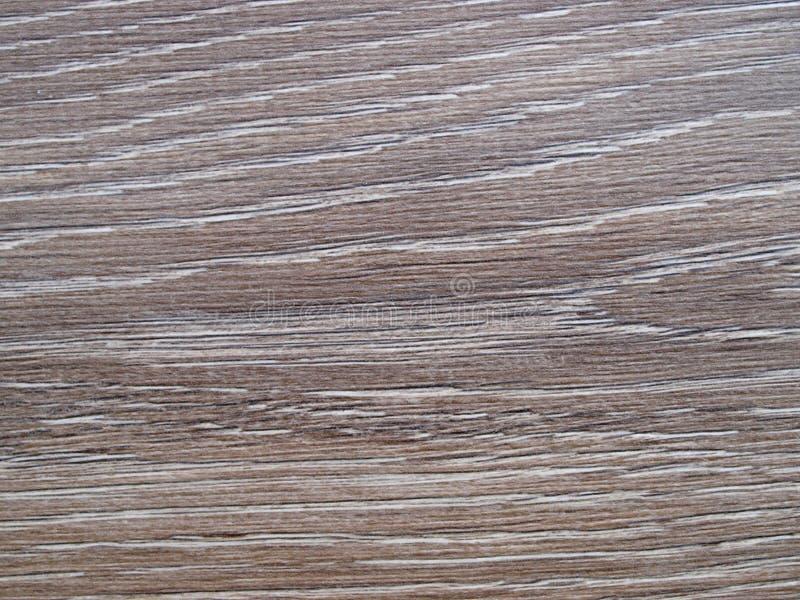 Textura do assoalho do carvalho fotos de stock