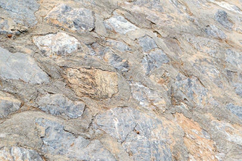 Textura do assoalho da pedra seca foto de stock royalty free