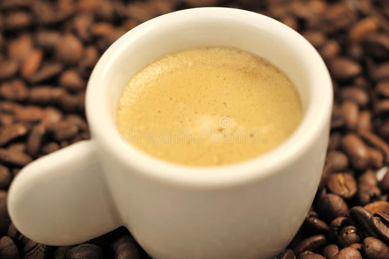 Textura do café e do feijão fotografia de stock royalty free