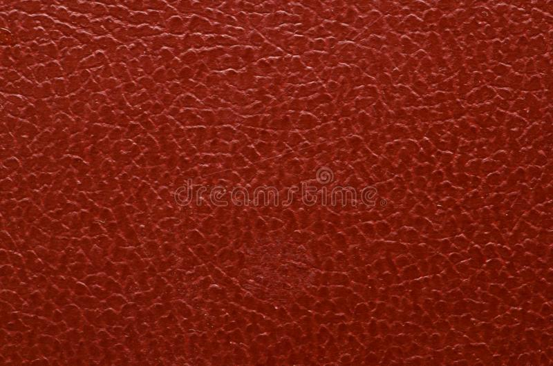 Textura do close up da pele imagem de stock