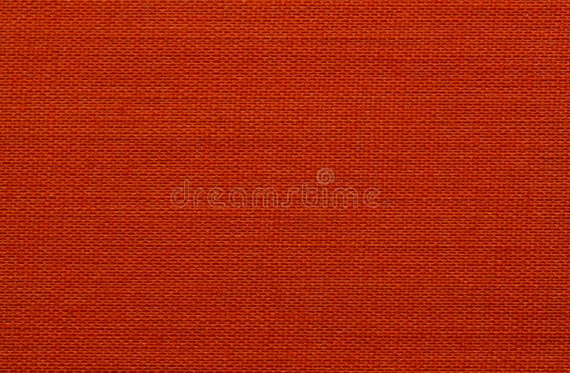 Textura do close up da pele foto de stock