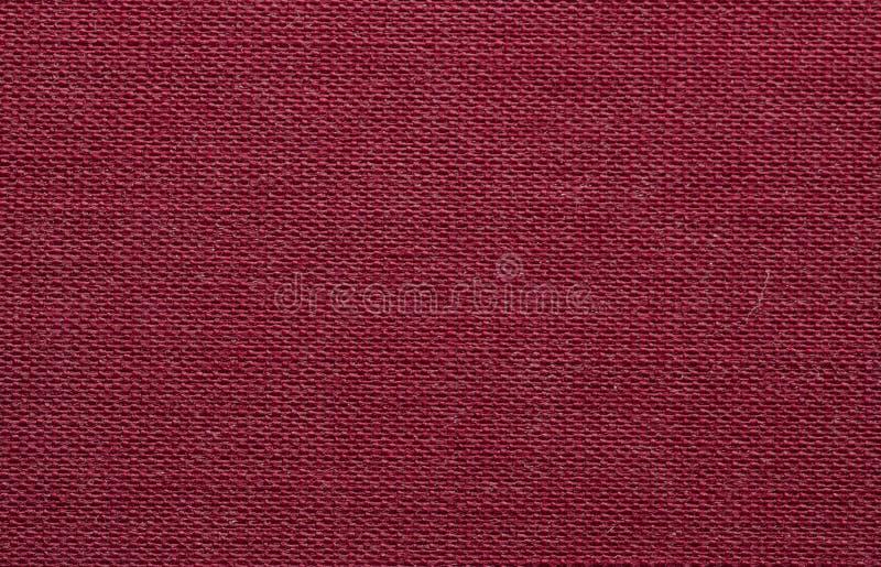 Textura do close up da pele fotos de stock