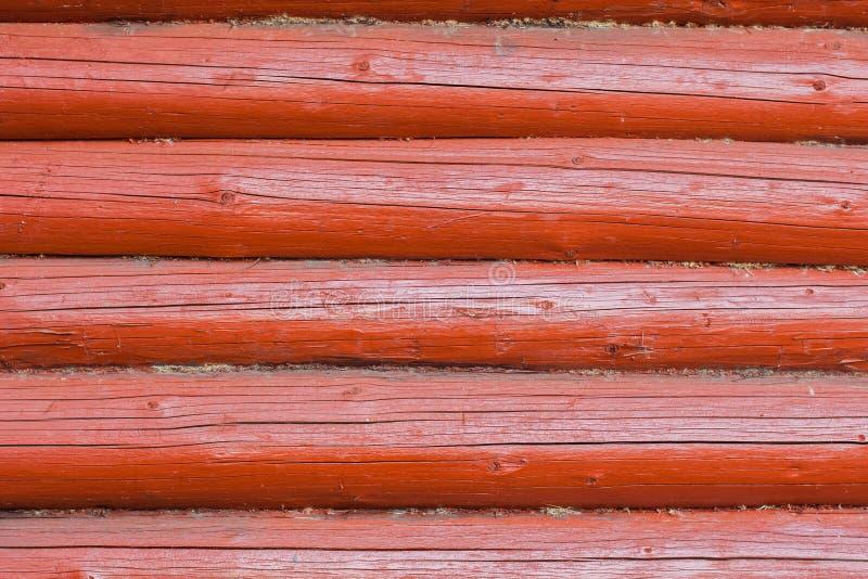 Textura do close-up redondo dos logs foto de stock