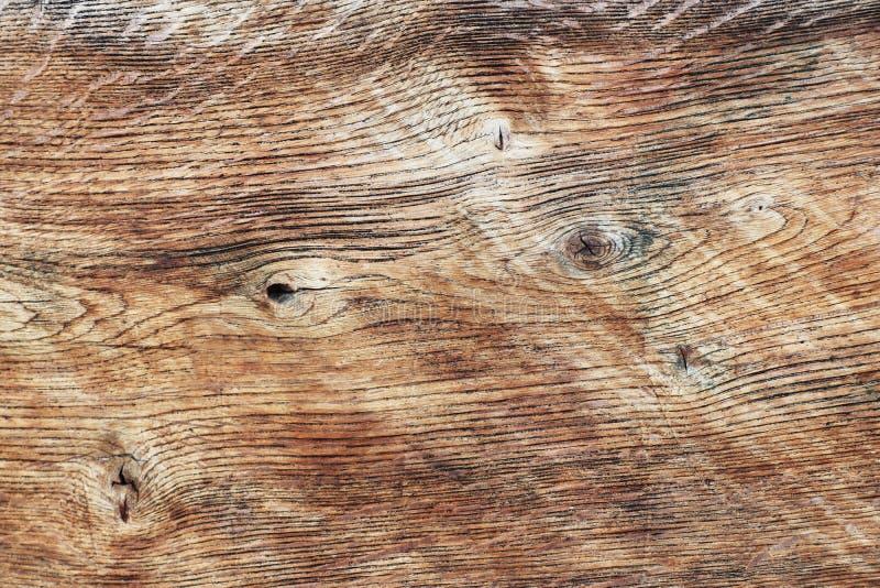 A textura do corte lustrado de uma árvore em tons marrons O corte da placa da madeira vista Material de construção natural Fu fotografia de stock