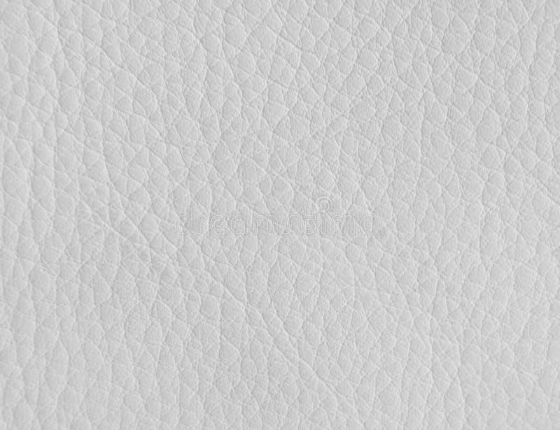 Textura do couro branco foto de stock