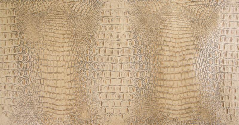 Textura do couro de Tan Colored Embossed Gator Back fotos de stock royalty free