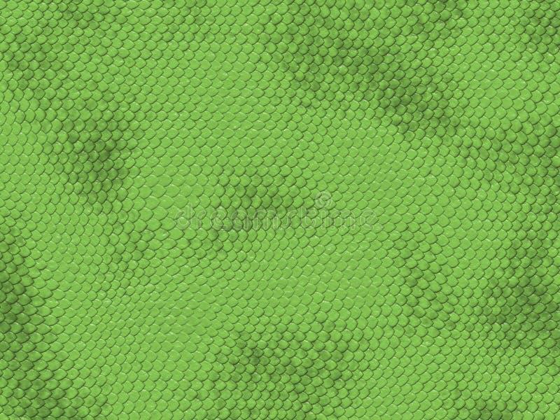 Textura do dragão ilustração do vetor