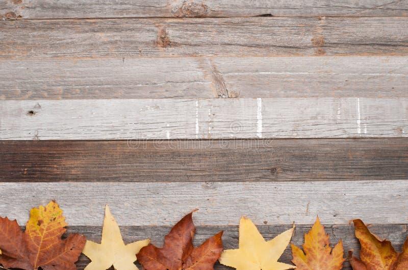 Textura do fundo com a tabela de madeira velha e as folhas caídas amarelas fotos de stock