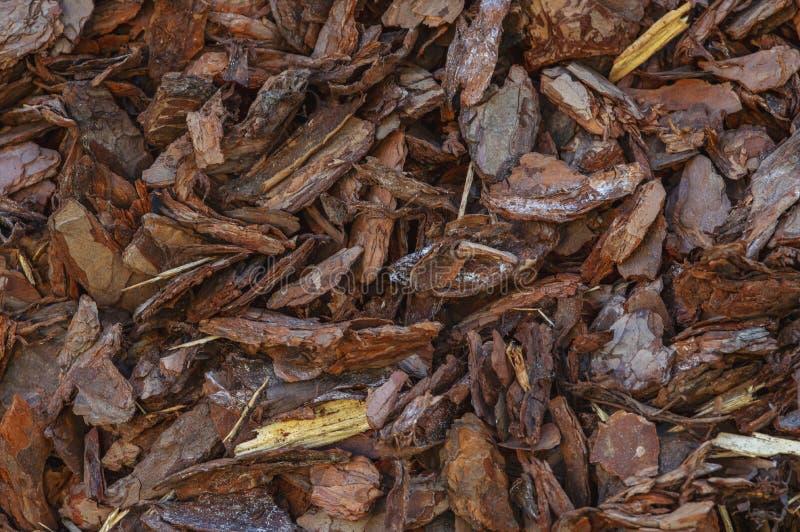 Textura do fundo da casca ou da tira com partes pequenas de madeira natural imagem de stock royalty free