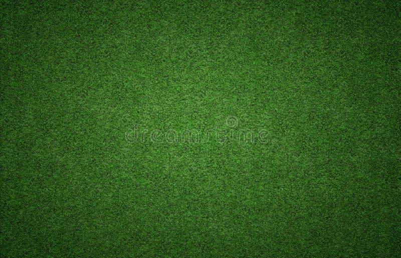 Textura do fundo da grama
