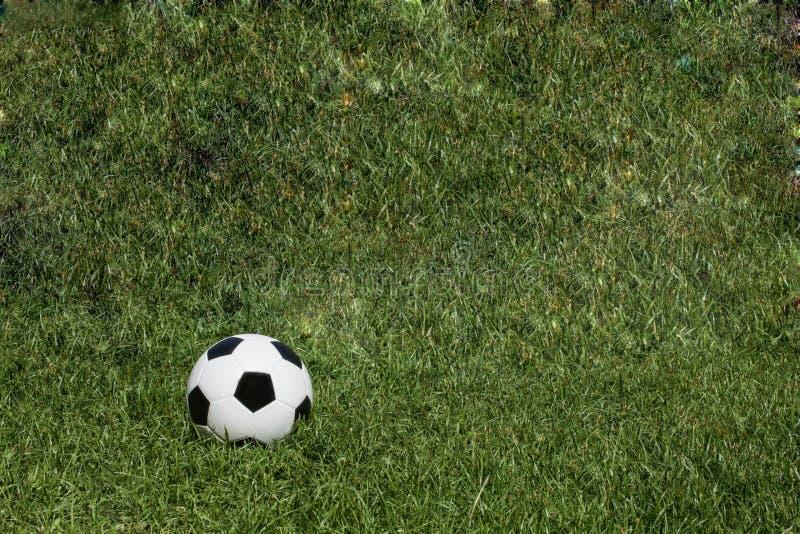 Textura do fundo da grama do campo de futebol do futebol foto de stock royalty free