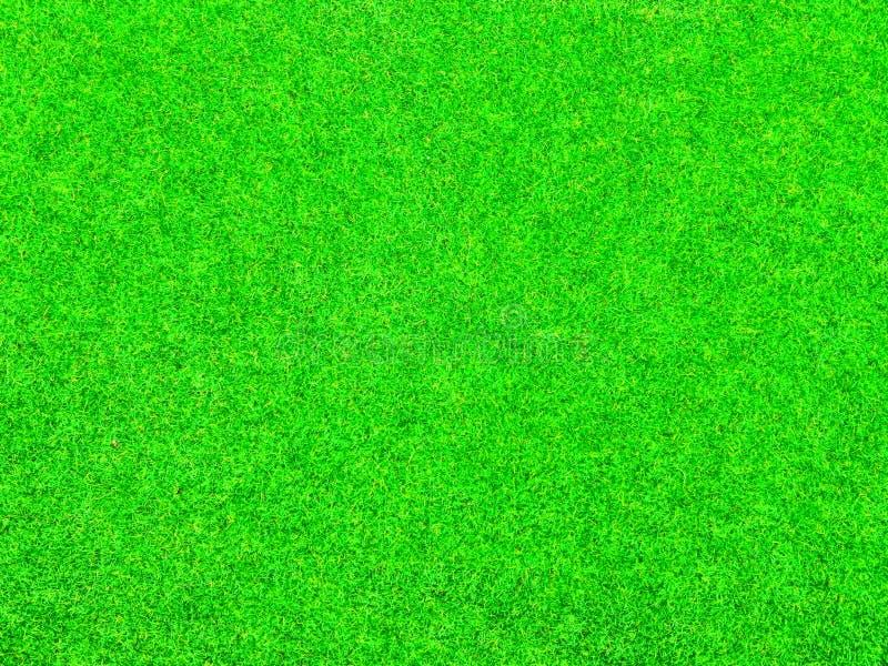 Textura do fundo da grama verde fotos de stock royalty free