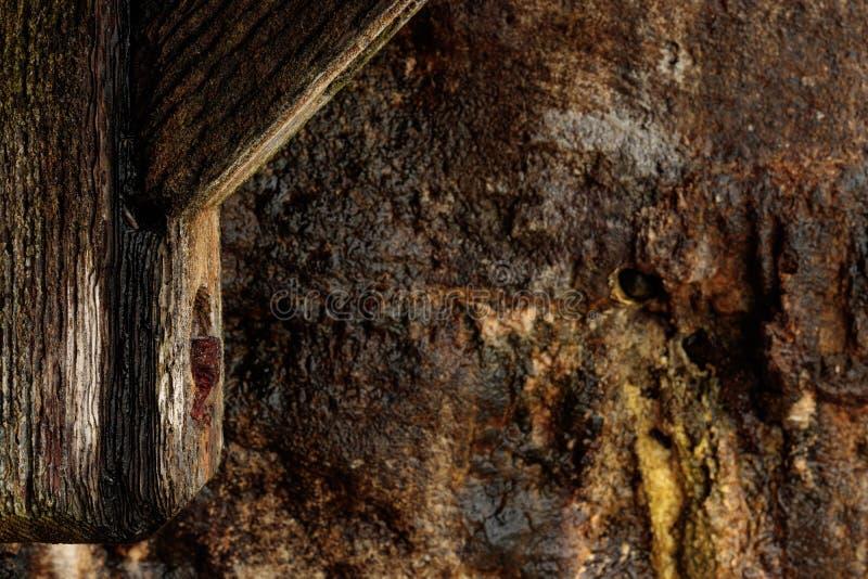 A textura do fundo da natureza do cais de madeira velho com detalhe oxidado do parafuso no primeiro plano, molhou a parede listad imagens de stock royalty free