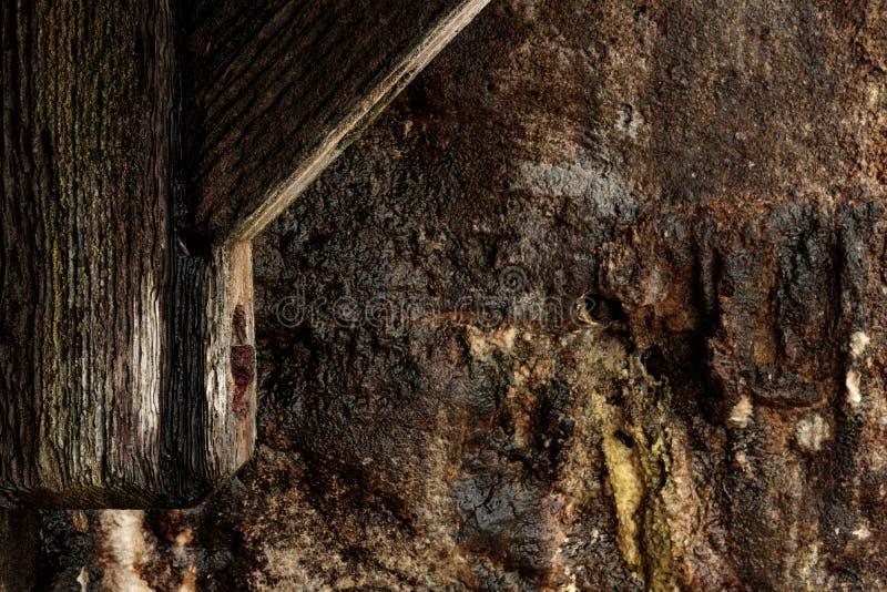 A textura do fundo da natureza do cais de madeira velho com detalhe oxidado do parafuso no primeiro plano, molhou a parede listad fotografia de stock royalty free
