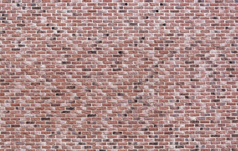 Textura do fundo da parede do rosa do vintage, o preto e o vermelho de tijolo Tema do sumário do detalhe do grunge da arquitetura imagens de stock
