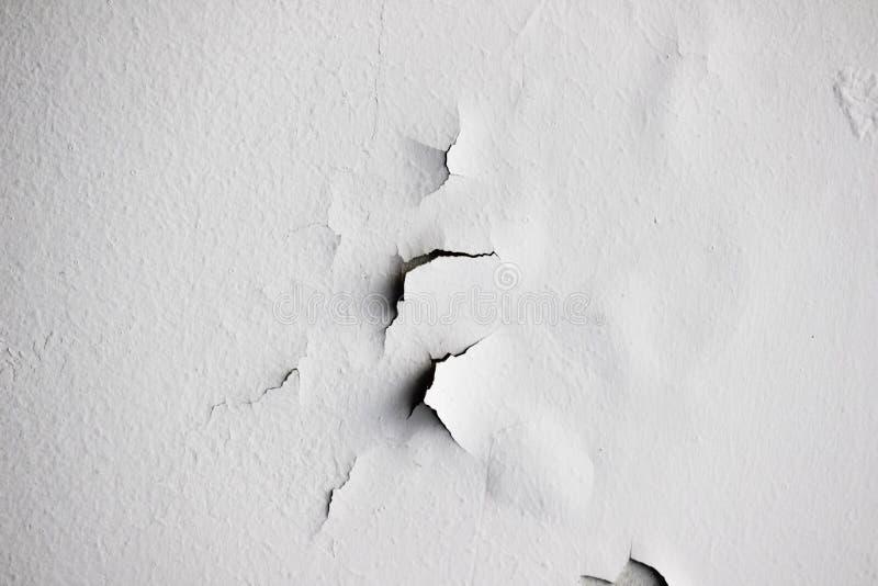 Textura do fundo do muro de cimento branco do grunge com pintura da casca foto de stock royalty free
