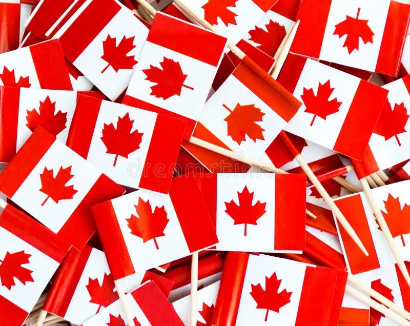 Textura do fundo - um desordem de palitos canadenses da bandeira da folha de bordo foto de stock royalty free