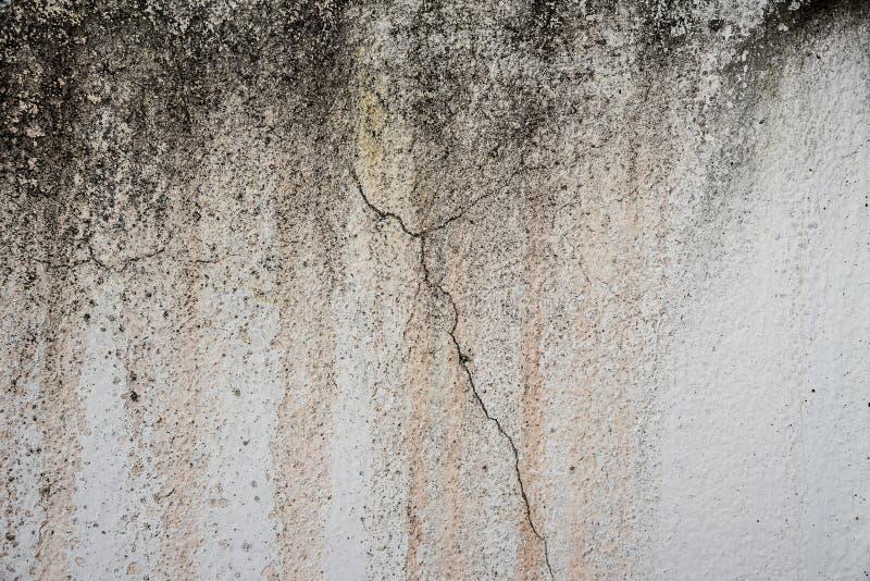 Textura do grunge do cimento e do coccrete imagens de stock