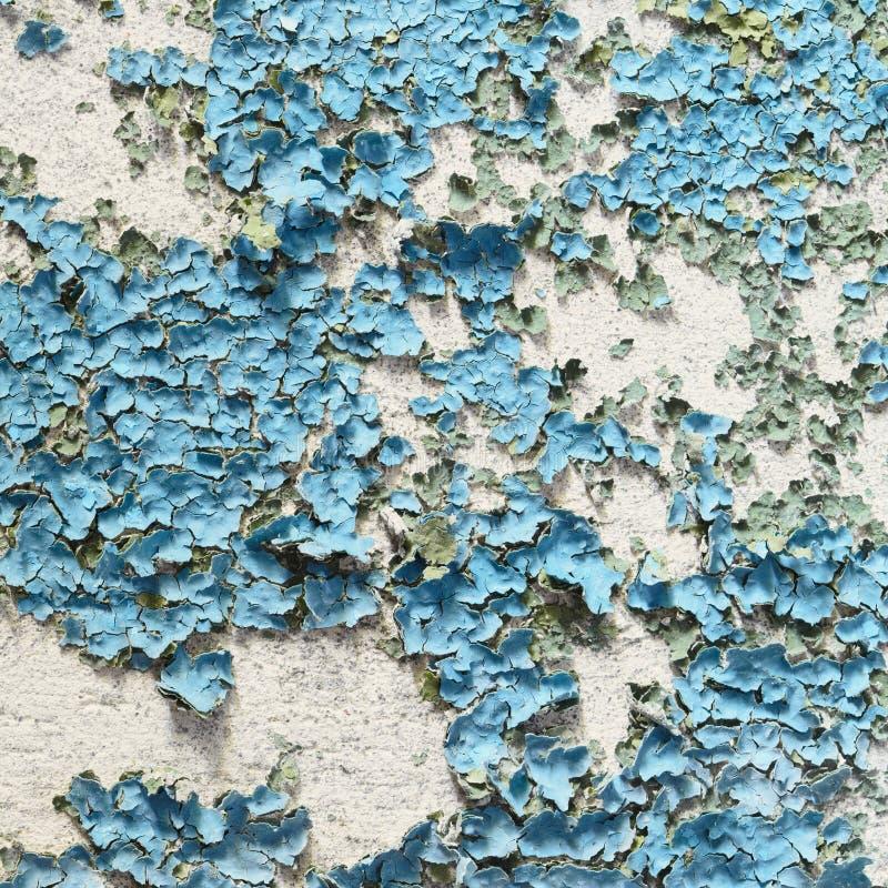 A textura do muro de cimento cobriu a pintura descascada azul fotografia de stock royalty free