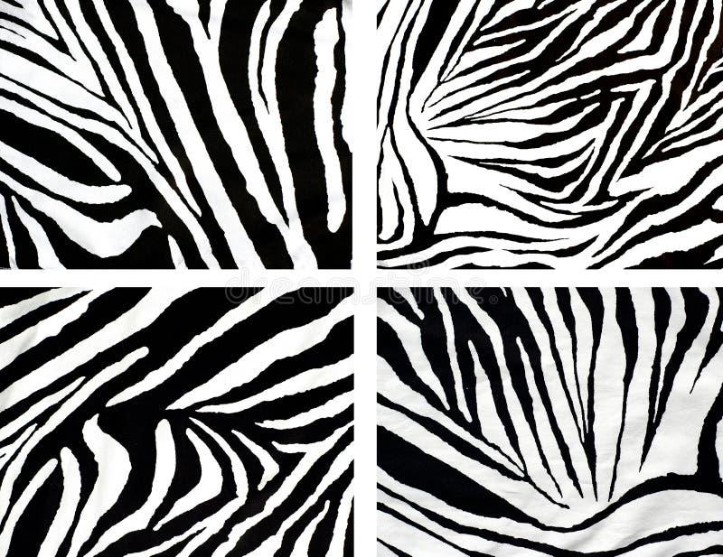 Textura do pano da zebra ilustração do vetor
