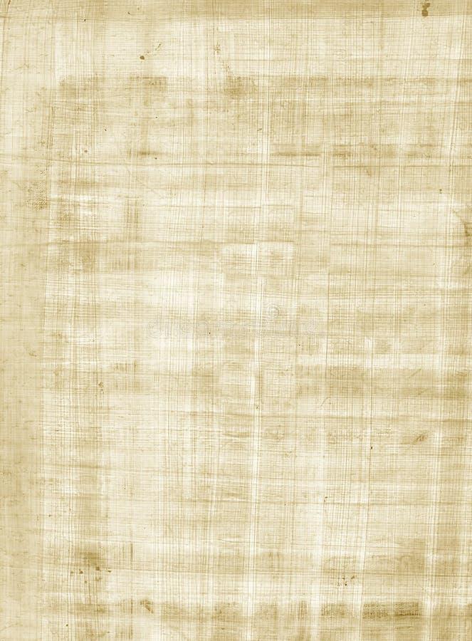 Textura do papiro fotografia de stock royalty free