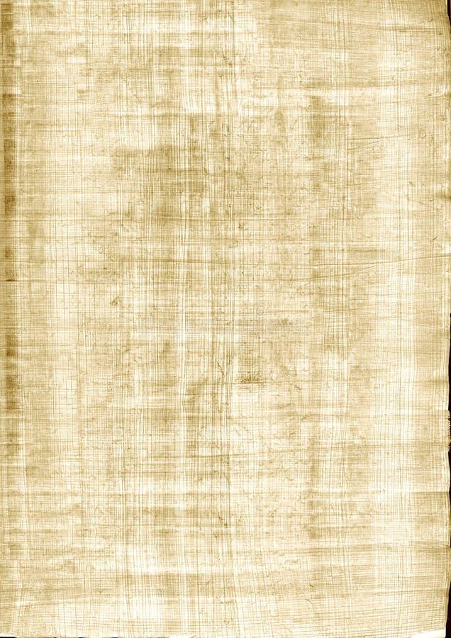 Textura do papiro ilustração royalty free