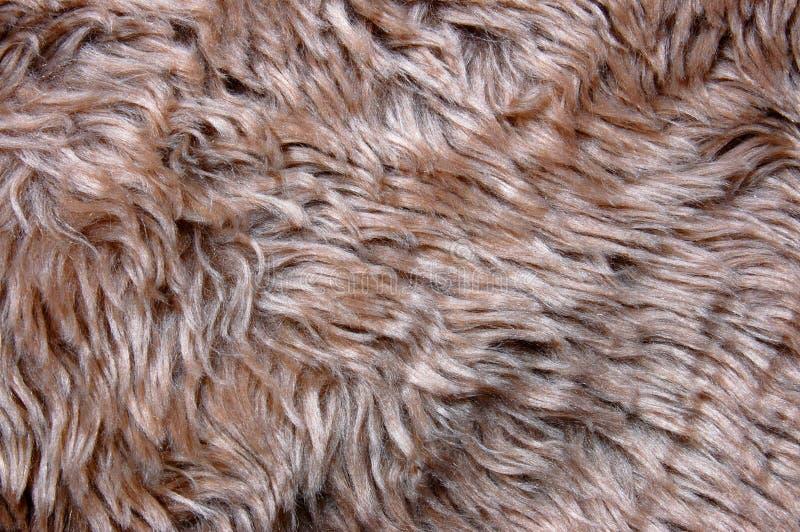 Textura do Pelt fotos de stock