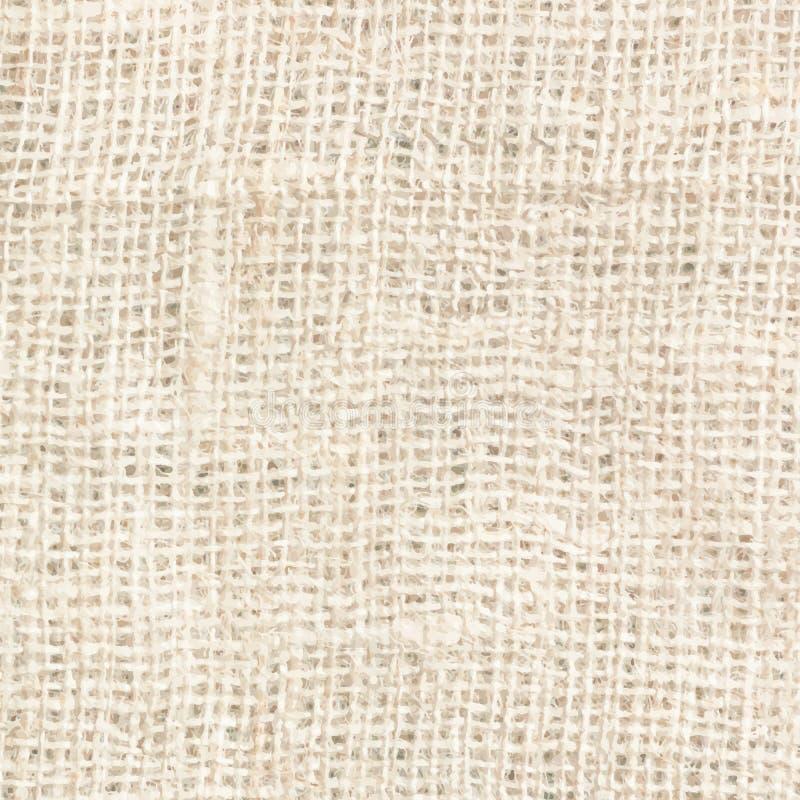 Textura do saco. ilustração royalty free