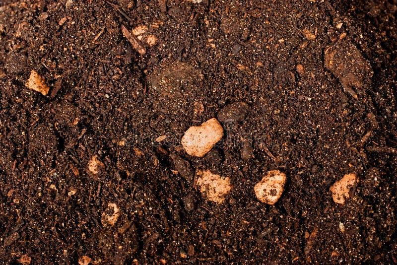Textura do solo de Brown imagens de stock royalty free