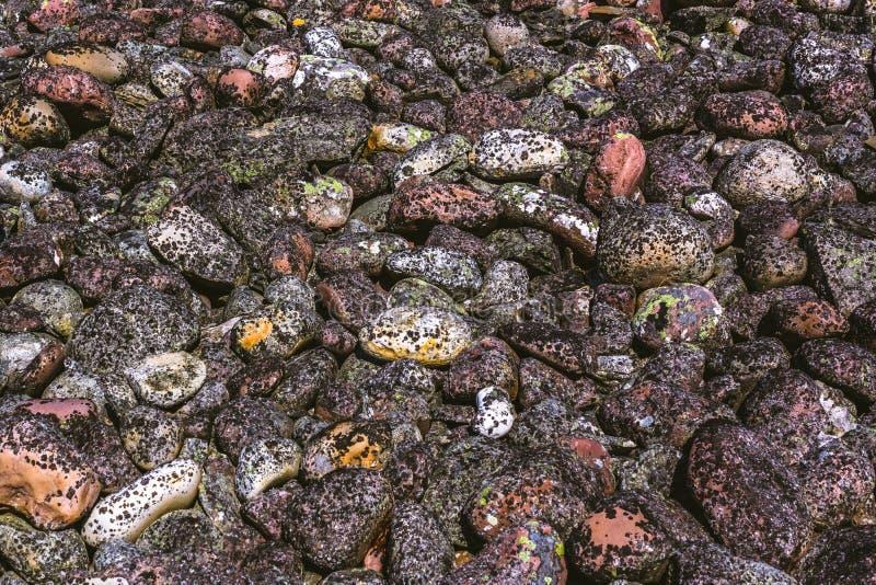 Textura do teste padrão de pedras redondas do musgo fotografia de stock royalty free