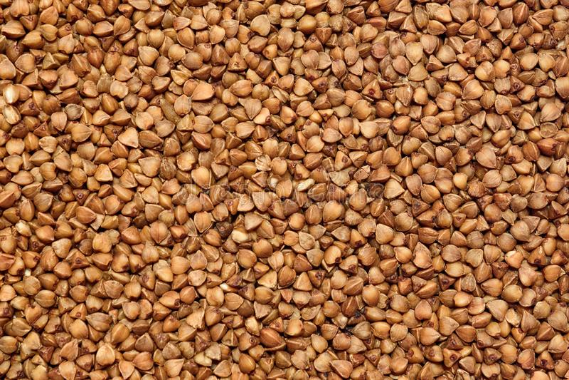 A textura do trigo mourisco imagem de stock royalty free