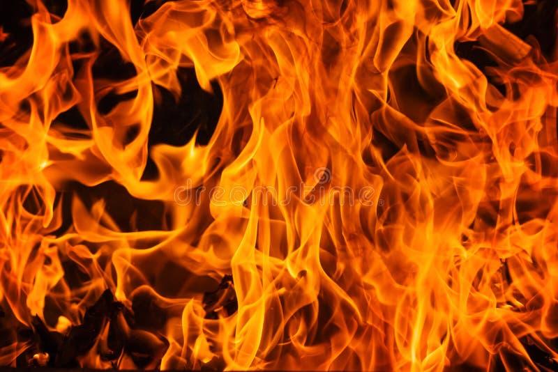 Textura e fundo da chama do fogo de Blazine imagem de stock royalty free