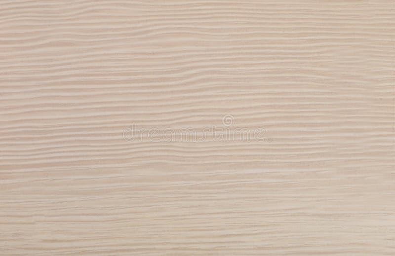 Textura e fundo da madeira do marfim imagens de stock