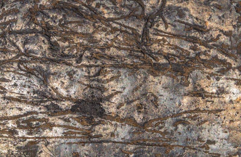 A textura enrugada da pedra velha com um teste padrão natural fundo escuro natural do sumário fotos de stock royalty free