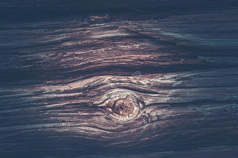 Textura escura de um log velho fotografia de stock royalty free