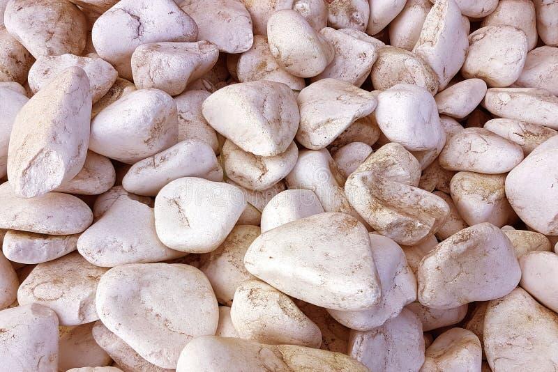 Textura: grava enarenada grande Las piedras blancas finas de la tiza de una sepia entonan Alivios artísticos de objetos naturales imágenes de archivo libres de regalías