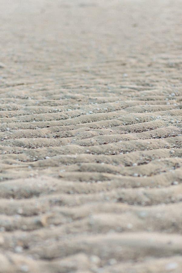 Textura hermosa, arena ondulada en el océano imágenes de archivo libres de regalías